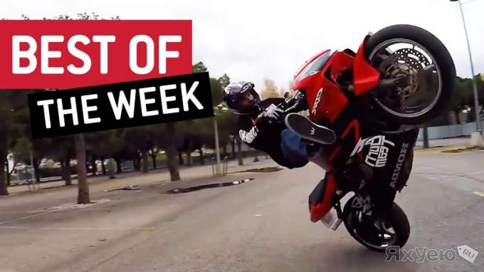 Best Videos Compilation Week 1 December 2016